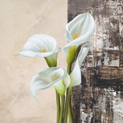 Wall art print and canvas. Jenny Thomlinson, Nature II