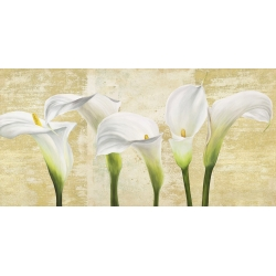 Wall art print and canvas. Jenny Thomlinson, Callas on Gold (neutral variation)