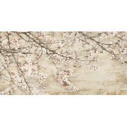 Wall art print and canvas. Silvia Mei, Cherry in bloom