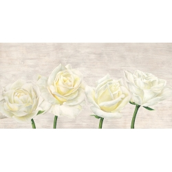 Wall art print and canvas. Jenny Thomlinson, Classic Roses