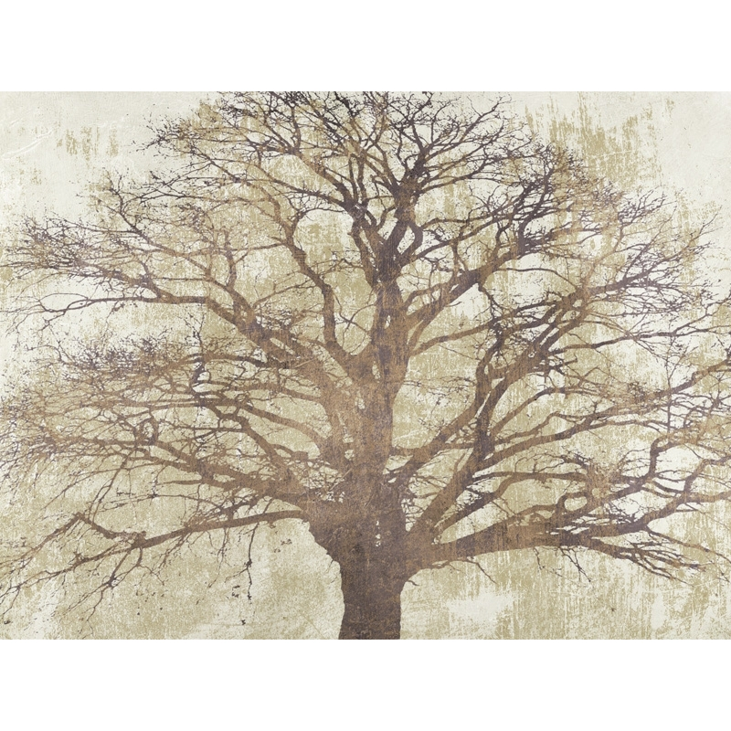 Wall art print and canvas. Alessio Aprile, Sacred Oak