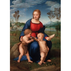 Wall art print and canvas. Raffaello, The Virgin of the Goldfinch