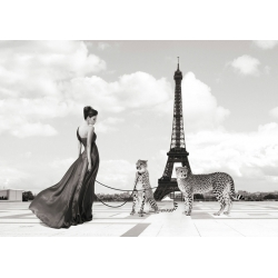Wall art print and canvas. Julian Lauren, Trocadero View (detail)