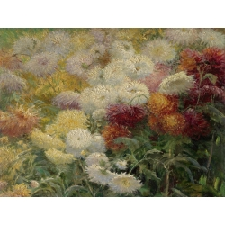 Wall art print and canvas. Gustave Caillebotte, Chrysanthemums in the Garden at Petit-Gennevilliers
