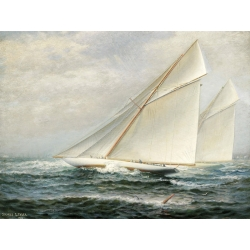 Wall art print and canvas. James Gale Tyler, America's Cup Racing