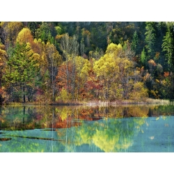 Wall art print and canvas. Krahmer, Forest in autumn colours, Sichuan, China