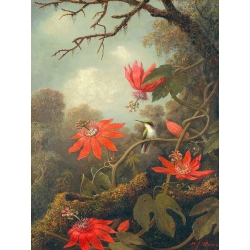 Wall Art Print and Canvas. Heade, Hummingbirds and Passionflowers