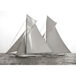 Cuadro en canvas. Barcos de Vela, Columbia and Shamrock, 1901