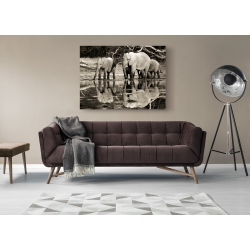 Wall art print and canvas. Krahmer, African elephants, Okavango, Botswana