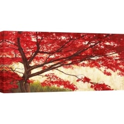 Wall art print and canvas. Leonardo Bacci, Maple Tree